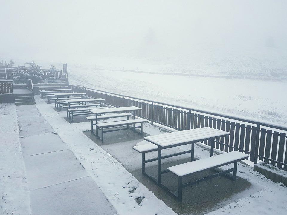 sneg-sapa